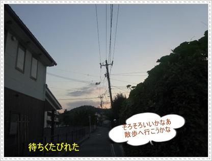 DSC00533_20140726001032e69.jpg