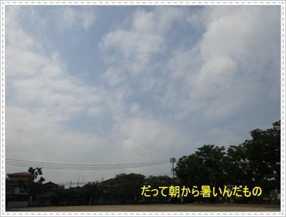 DSC00550_20140727005134369.jpg