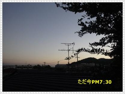 DSC00560_20140727010037c38.jpg
