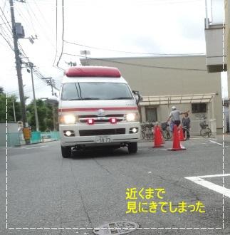 DSC00783_20140804232249dfb.jpg