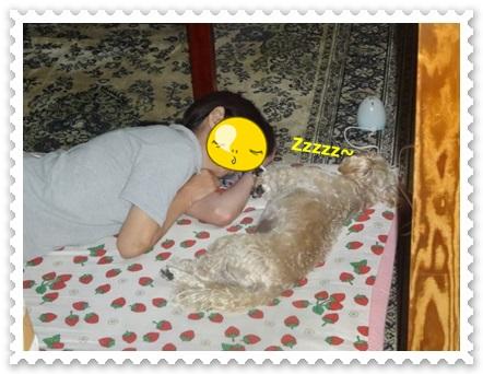 DSC00900_20140809235658349.jpg