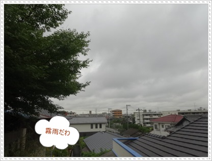 DSC09825.jpg