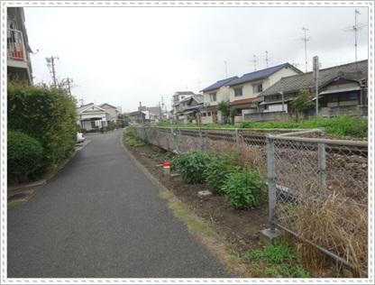 DSC09844.jpg