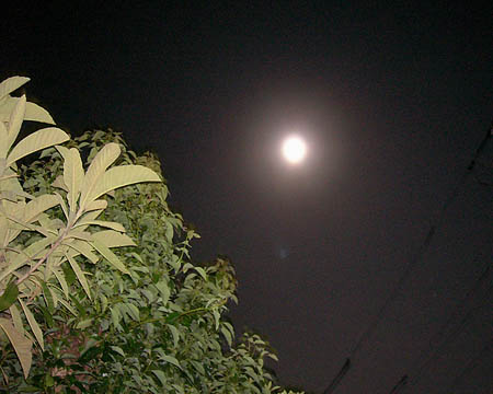 moon_13.jpg