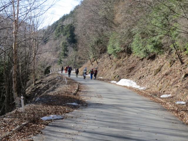 5月3日 歌宿から林道歩き