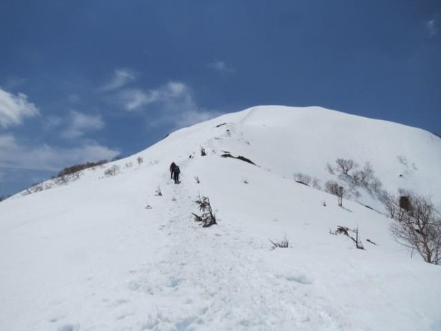 5月3日 6合目以降は開ける 小仙丈ケ岳