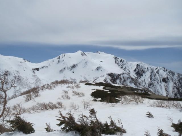 5月4日 馬の背から仙丈ケ岳