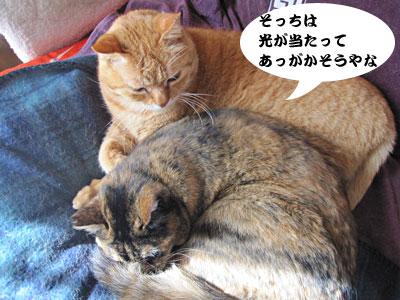 14_02_28_2.jpg
