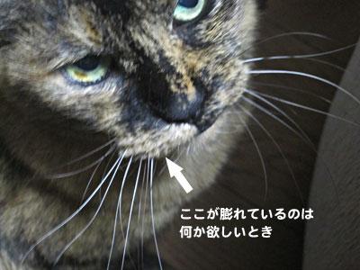 14_03_02_5.jpg