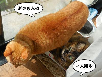 14_03_19_2.jpg