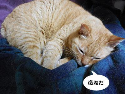 14_03_27_1.jpg
