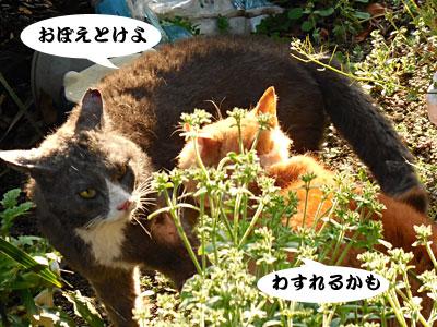 14_03_27_2.jpg