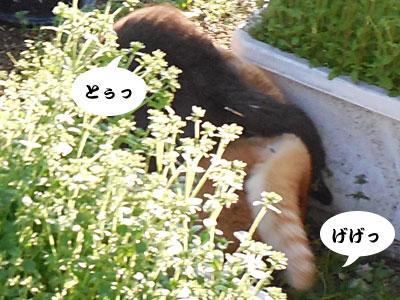 14_03_27_3.jpg