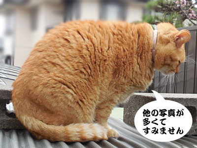 14_03_29_3.jpg