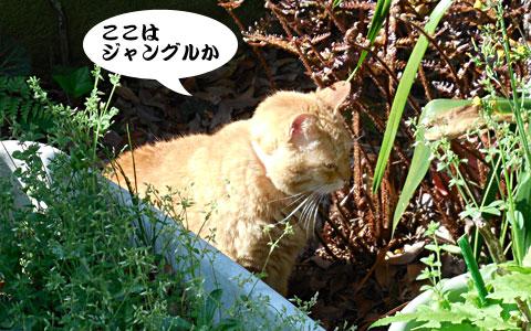 14_04_16_2.jpg