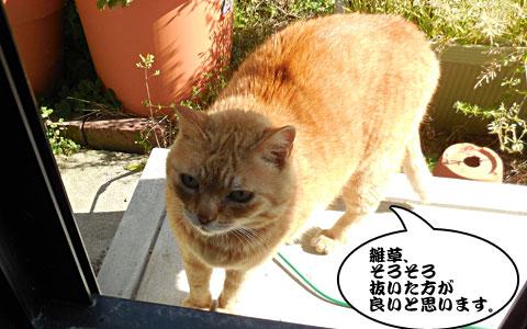 14_04_16_3.jpg