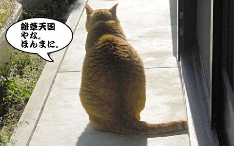 14_04_16_5.jpg