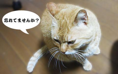 14_04_18_1.jpg