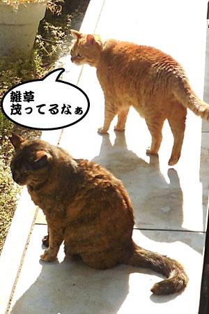 14_04_27_1.jpg