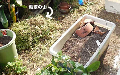 14_05_09_3.jpg