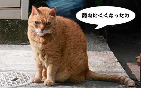 14_05_09_4.jpg