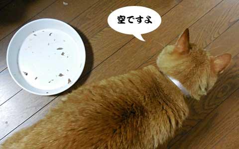 14_05_19_1.jpg