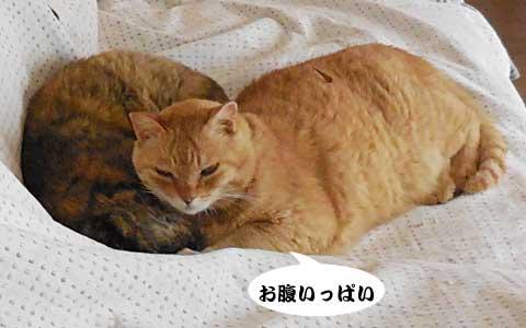 14_05_19_3.jpg