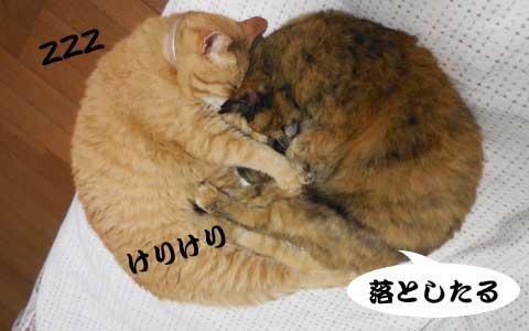 14_05_27_4.jpg