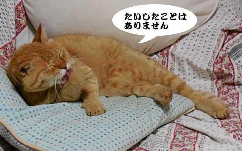 14_05_31_3.jpg