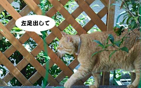 14_06_24_1.jpg