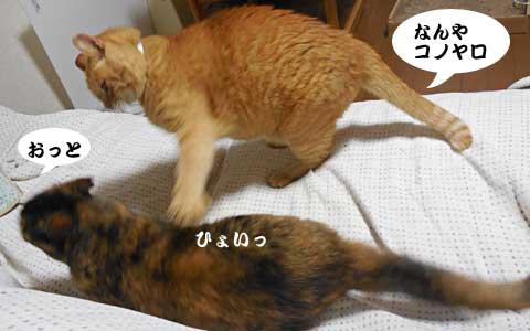 14_07_20_2.jpg