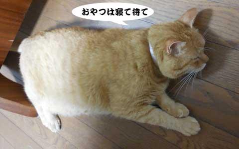 14_08_17_3.jpg