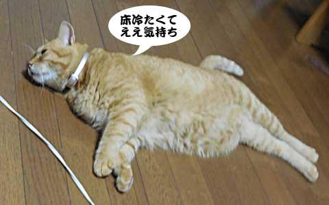 14_08_19_1.jpg