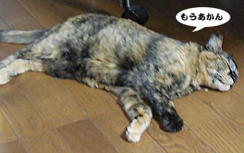 14_08_19_2.jpg