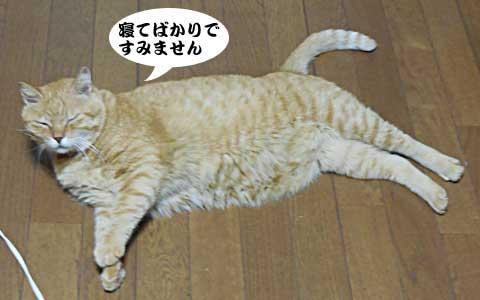 14_08_19_3.jpg