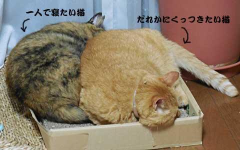 14_08_19_6.jpg