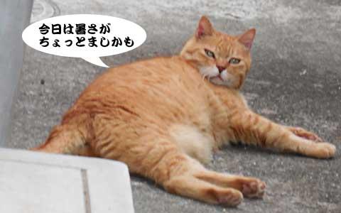 14_08_21_1.jpg