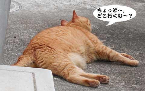 14_08_21_3.jpg