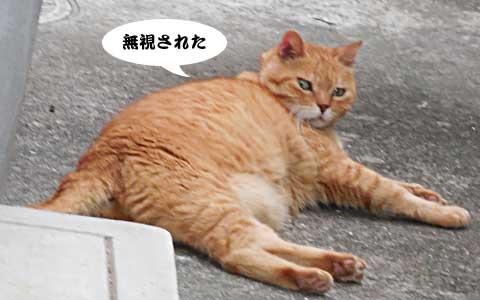 14_08_21_4.jpg