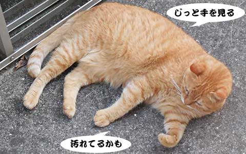14_08_23_2.jpg