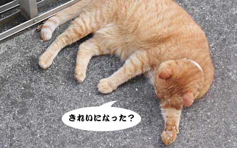 14_08_23_5.jpg