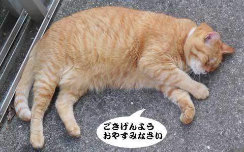 14_08_23_6.jpg