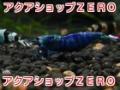 アクアショップZERO(ゼロ)