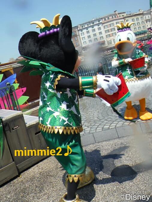 ミッキーとドナルドのスイカバケツ対決☆トロスプ☆
