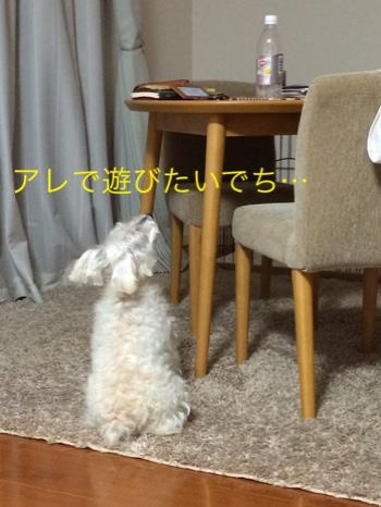 fc2blog_201408052009369c4.jpg