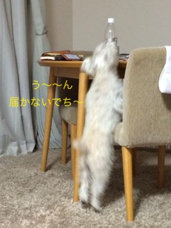 fc2blog_20140805201507bda.jpg