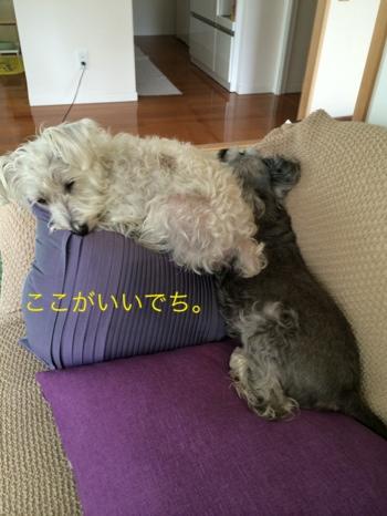 fc2blog_201408100843346b3.jpg
