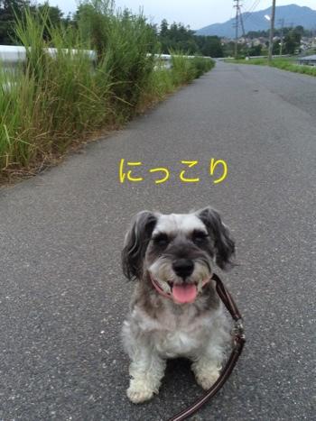 fc2blog_20140815142538a6a.jpg