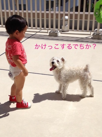 fc2blog_201408192209120a7.jpg