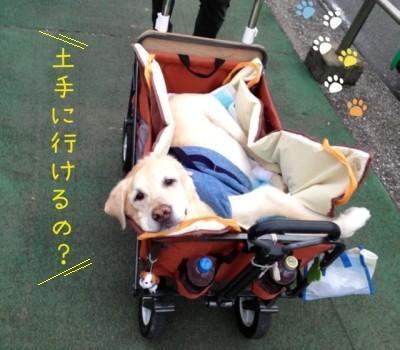 blog1_201406302328438a1.jpg